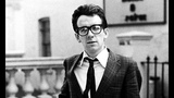 Elvis Costello &amp The Attractions - Good Year For The Roses (with lyrics)