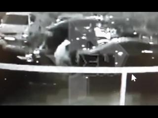 Камера сняла момент избиения депутата Госдумы Сергея Жигарева в Москве