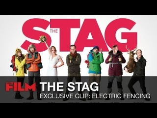 The Stag Clip: Electric Fencing