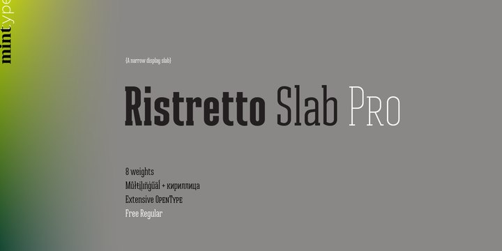 шрифт Ristretto Slab Pro Regular