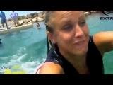 Девушка плавает с дельфинами.