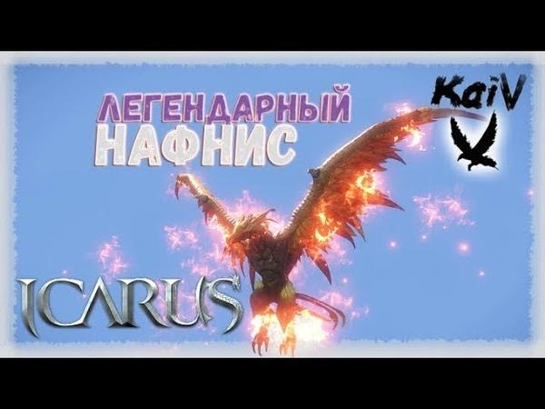 Icarus. Пламенный Нафнис - легенда Пресыщенных Пустошей. How tame Fiery (Scarlet) Naphnis