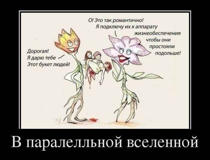Знал, что екатерина юрлова и йозеф перхт фото свадьбы насмешку