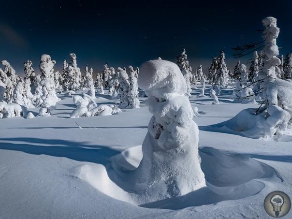 В ПОГОНЕ ЗА АВРОРОЙ По какой-то неведомой причине, меня чаще, если не сказать постоянно, тянет на север. Туда, где мороз и стужа, и снега по пояс. Ничего удивительного, что в предверии Нового