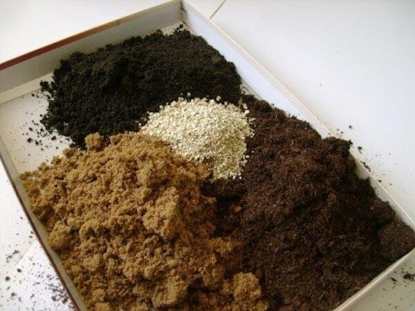 Что нельзя добавлять в почву для рассады Скоро уже придет время выращивания рассады, кто-то может быть уже занялся этим важным делом. И в первую очередь конечно же нужно подготовить почву для