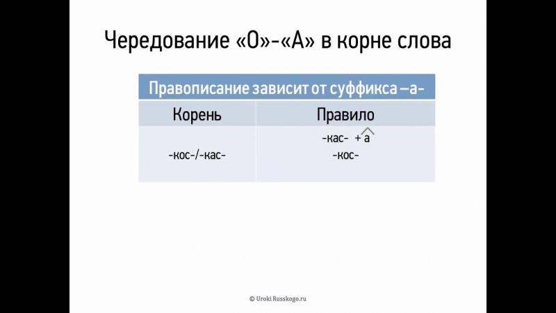 Чередование О А в корне сРова 5 кРасс видеоурок презентация