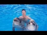 дельфины поют песню Мне снова 18 - Дмитрий Нестеров и Бурановские Бабушки