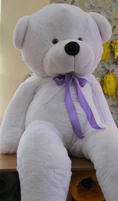 Медведи Плюшевые, 20 июня , Якутск, id215054323