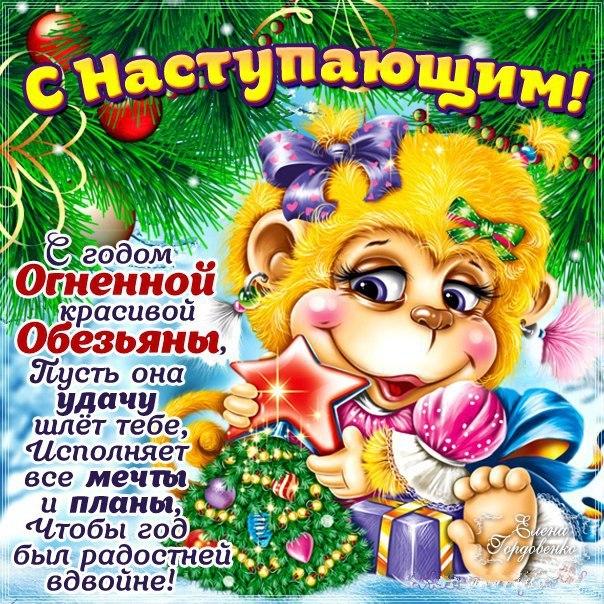 Фото №394551037 со страницы Михаила Сергеева