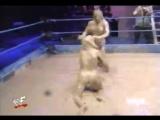 борьба в грязи...бедная девушка(...