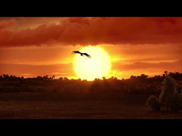 Akp 'nin Hazırlamış Olduğu Reklam Filmi ! Erdoğanın Kendi Sesinden , Yeni