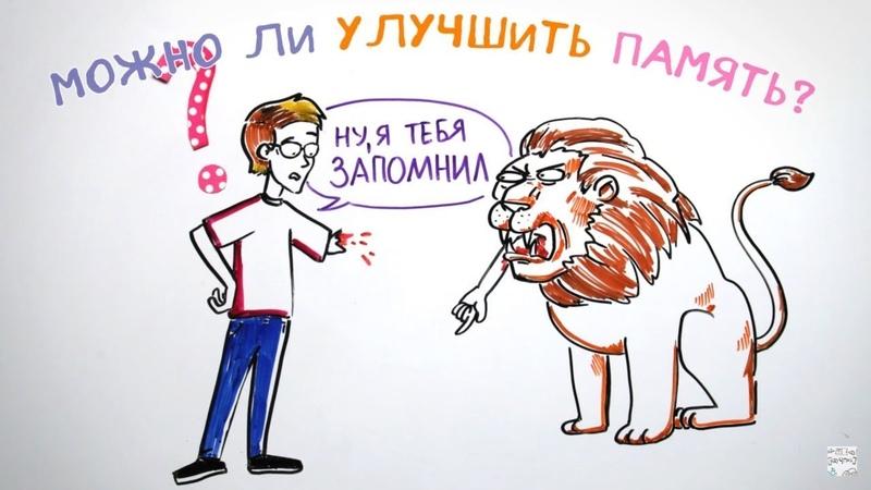 Можно ли улучшить память — Научпок feat. Артур Шарифов