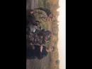 Видео отзыв команды Беспредельщики