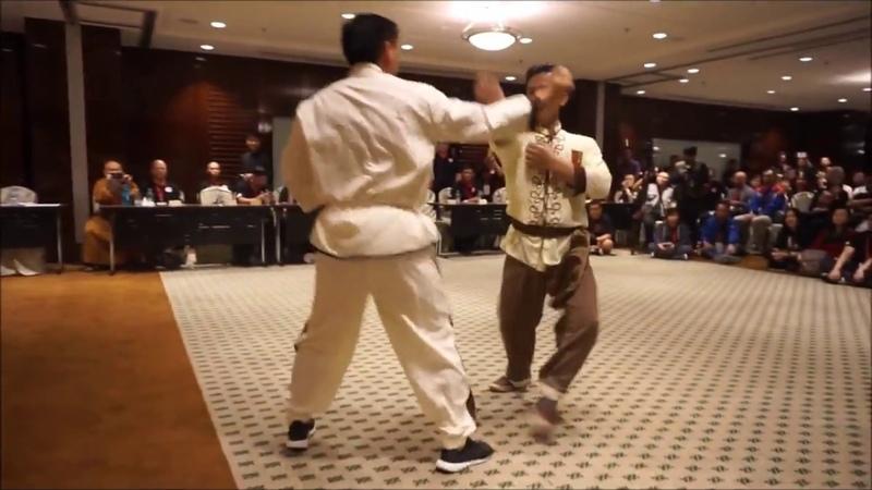 2017 International South Shaolin Wuzuquan Conference at Malaysia