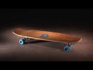 BOARDSHOP.BY :: Arbor Skateboards :: Product Profiles - Agent