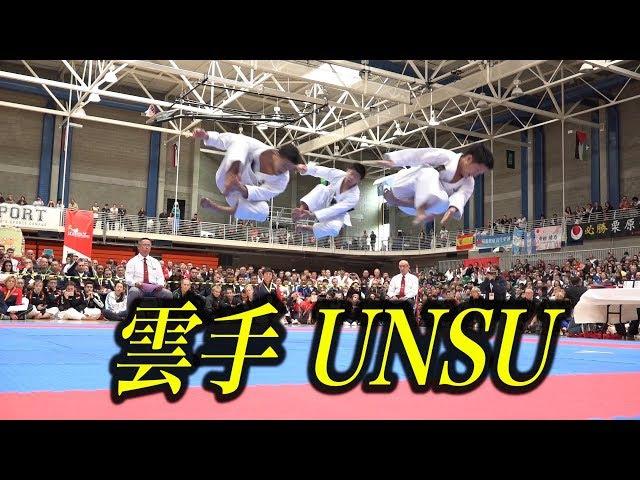 飛んだ〜!日本空手男子の雲手!Karate Kata Unsu in 2017 JKA WORLD TOURNAMENT