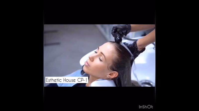 Esthetic house CP-1
