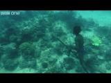 Нереальная подводная охота   без акваланга!