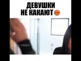 девушки не какают)))