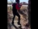 Необычное упражнение Золани Тете