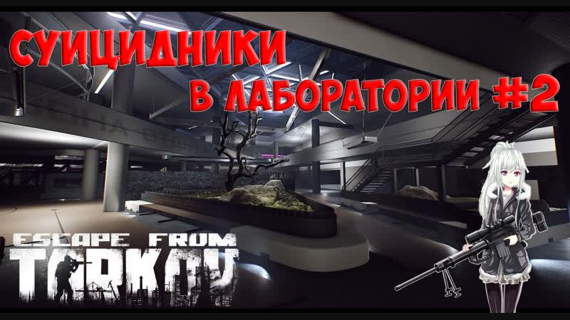 в лабораториях Таркова...