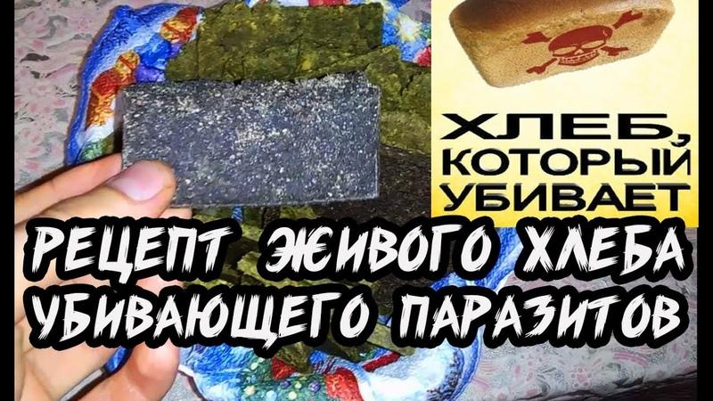 Рецепт сыроедческого хлеба убивающего паразитов. Антипаразитарная чистка. Фролов выведение паразитов