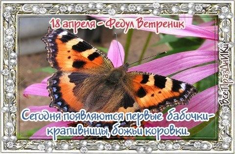 https://pp.userapi.com/c7003/v7003465/2f936/WB_DHGyksgo.jpg
