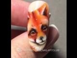 Обожаю лисичек ???