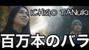 「日本語とロシア語」ICHIGO TANUKI - 百万本のバラ
