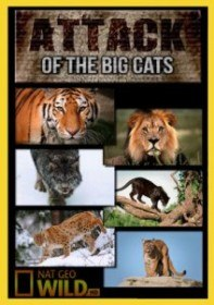 National Geographic: Атака больших кошек / National Geographic: Attack of the Big Cats (2012)