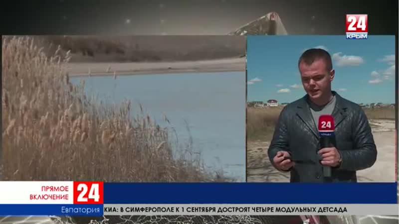 Андрей Филонов задержан прямое включение специального корреспондента телеканала Крым 24 Артёма Артёменко