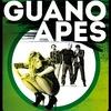 GUANO APES |22 мая | Краснодар | ARENA HALL|