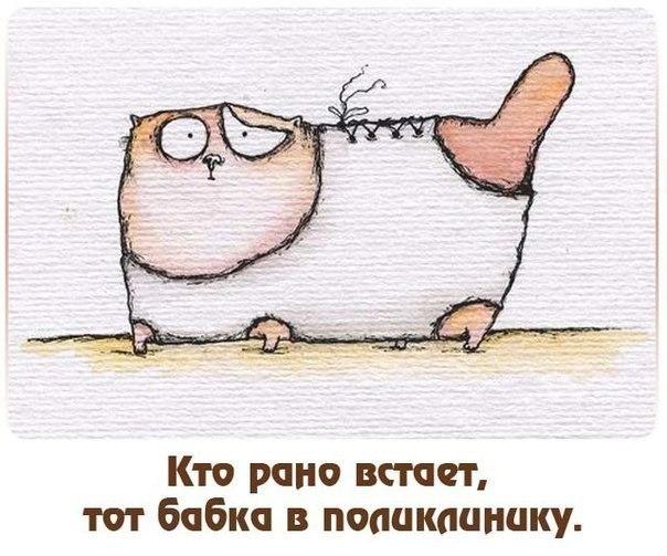 http://cs317720.userapi.com/v317720897/4fb2/5uSu9nt7j0g.jpg