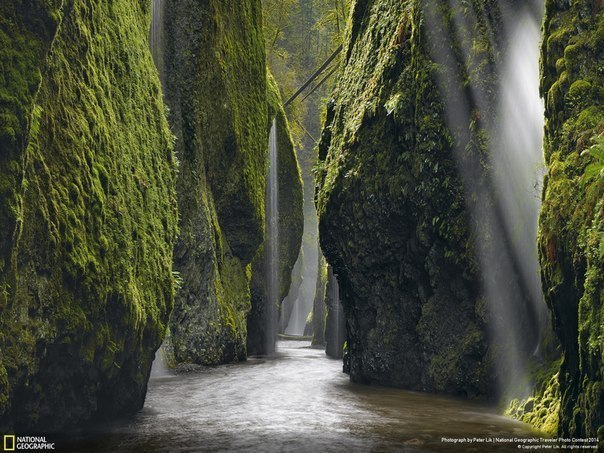 Скалы каньона Коламбия-Ривер-Гордж в американском штате Орегон