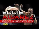 EDDIE ALVAREZ HIGHLIGHTS 2016 | BEST KNOCKOUTS in MMA | Rafael dos Anjos vs Eddie Alvarez