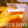 RAVEN JAWS
