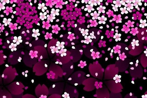 картинки 240х400 цветы: