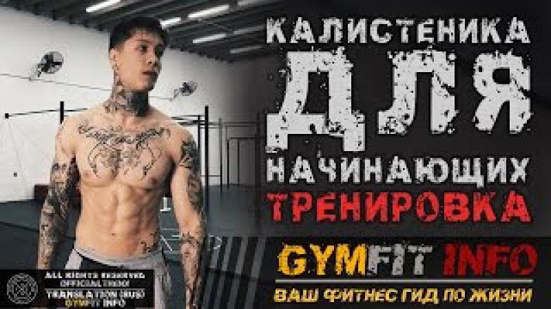 КРИС ХЕРИА Калистеника для НАЧИНАЮЩИХ Тренировка с СОБСТВЕННЫМ ВЕСОМ воркаут RUS GymFit INFO