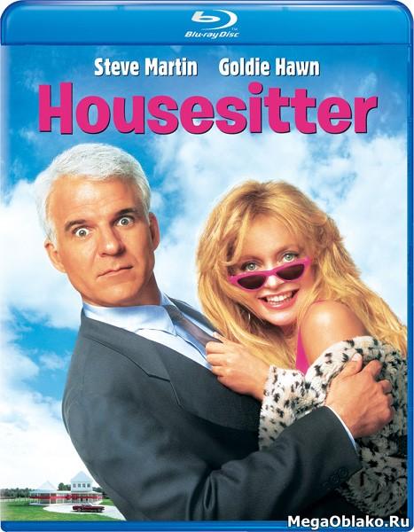 Домохозяйка / HouseSitter (1992/BDRip/HDRip)