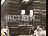 Суд Линча в концлагере - неизвестные подожгли приют, где издевались и убивали животных