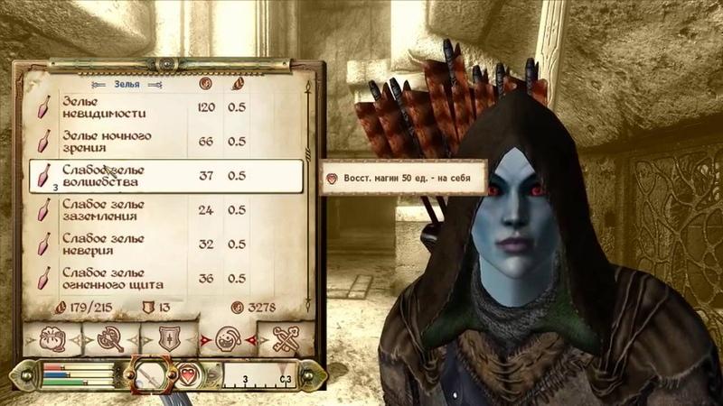 Dr. Venkman - The Elder Scrolls IV: Oblivion (PC) pt.4