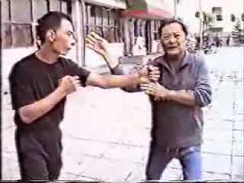 Wong Shun Leung Chum Kiu Applications (Second form of Wing Chun Kung Fu)