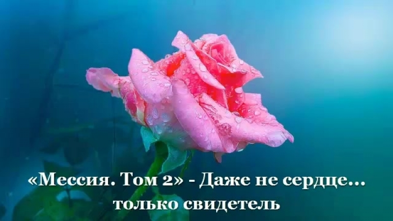 Том 2 - (Глава 5) Даже не сердце. только свидетель
