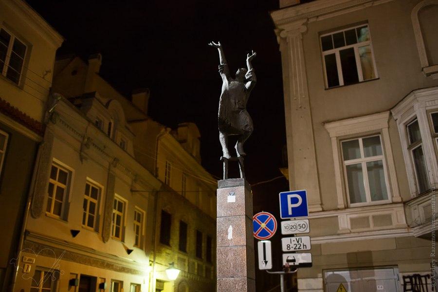 Ночной Вильнюс Литва Вилия Нярис