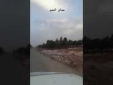Военная разведка САА из Аль-Каммари юг провинции Алеппо