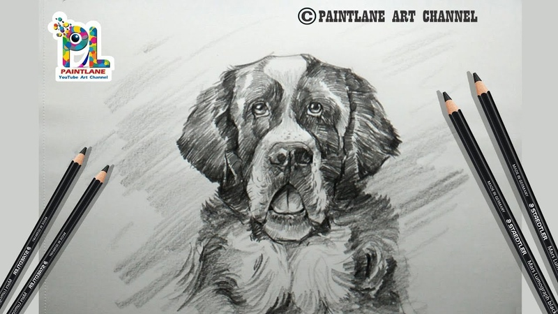 How to draw and Shade A Dog Drawing with Simple Rough Pencil Strokes | Step by Step