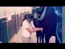 Мир конного спорта глазами детей НП 13