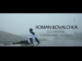 Roman kovalchuk (ed sheeran-supermarket flowers)