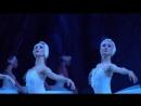 Балет - Лебединое озеро. Мариинский театр.