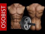 Упражнение для пресса и спины. ДВА колеса для фитнеса!!!